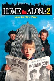Sám doma 2: Ztracen v New Yorku